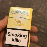 Thuốc lá cameo lạc đà